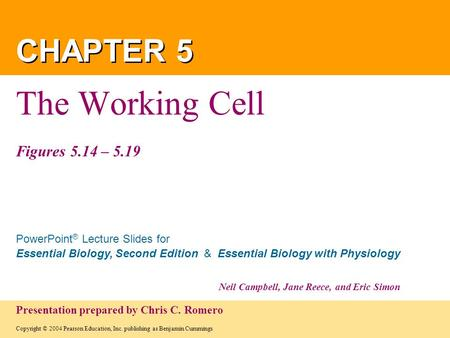 The Working Cell Figures 5.14 – 5.19