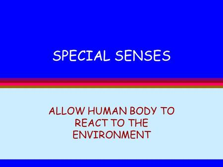 SPECIAL SENSES ALLOW HUMAN BODY TO REACT TO THE ENVIRONMENT.