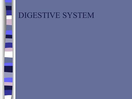 DIGESTIVE SYSTEM. INTRODUCTION n DIGESTIVE SYSTEM IS RESPONSIBLE FOR THE PHYSICAL AND CHEMICAL BREAKDOWN OF FOOD SO IT CAN BE TAKEN INTO THE BLOOD STREAM.