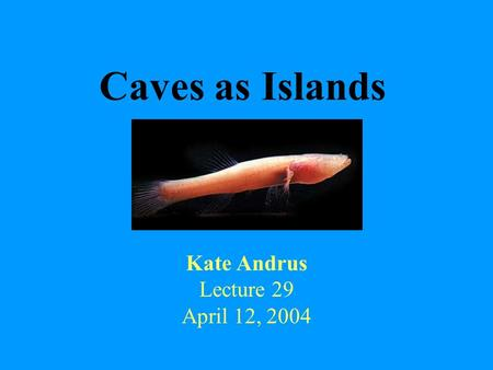 Caves as Islands Kate Andrus Lecture 29 April 12, 2004.