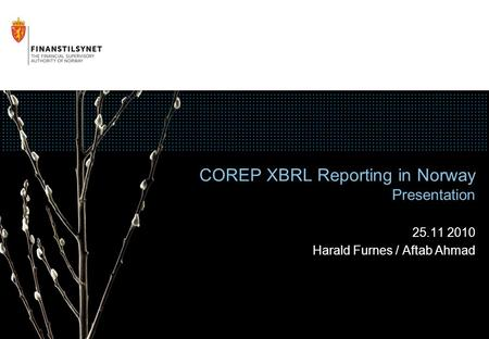 COREP XBRL Reporting in Norway Presentation