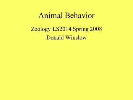 Animal Behavior Zoology LS2014 Spring 2008 Donald Winslow.