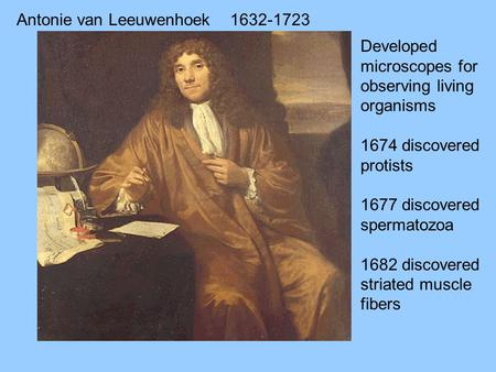 Antonie van Leeuwenhoek1632-1723 Developed microscopes for observing living organisms 1674 discovered protists 1677 discovered spermatozoa 1682 discovered.