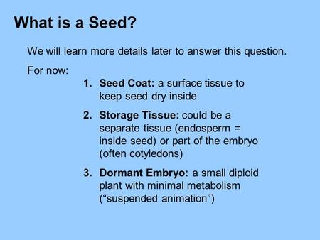 What is a Seed? We will learn more details later to answer this question. For now: Seed Coat: a surface tissue to keep seed dry inside Storage Tissue: