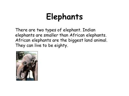 There are two types of elephant. Indian elephants are smaller than African elephants. African elephants are the biggest land animal. They can live to be.