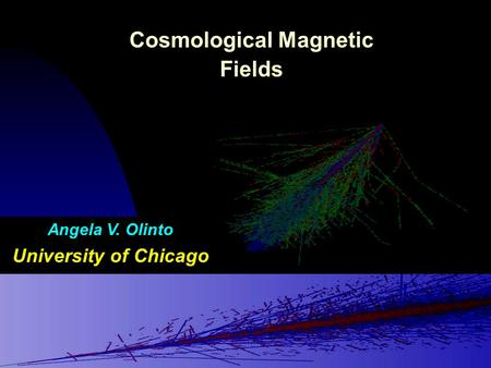 Cosmological Magnetic Fields Angela V. Olinto University of Chicago.