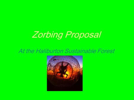 Zorbing Proposal At the Haliburton Sustainable Forest.