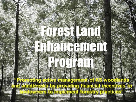 Forest Land Enhancement Program Promoting active management of KS woodlands and windbreaks by providing financial incentives to landowners to implement.