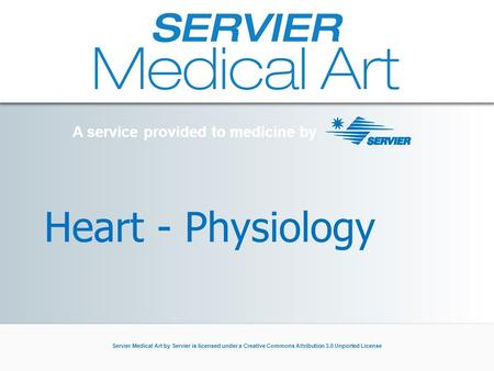 A service provided to medicine by Servier Medical Art by Servier is licensed under a Creative Commons Attribution 3.0 Unported License Heart - Physiology.