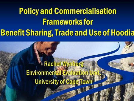 Policy and Commercialisation Frameworks for Benefit Sharing, Trade and Use of Hoodia Rachel Wynberg Environmental Evaluation Unit, University of Cape Town.