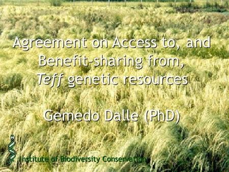 Agreement on Access to, and Benefit-sharing from, Teff genetic resources Gemedo Dalle (PhD) Institute of Biodiversity Conservation.