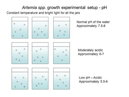 Artemia spp. growth experimental setup - pH Normal pH of the water Approximately 7.5-8 Low pH – Acidic Approximately 5.5-6 Moderately acidic Approximately.