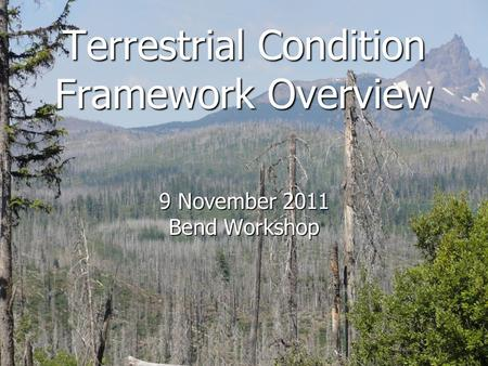 Terrestrial Condition Framework Overview 9 November 2011 Bend Workshop.