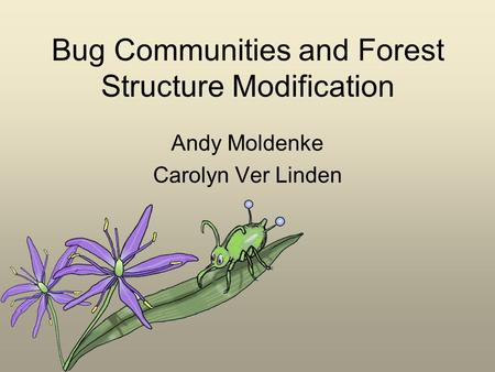 Bug Communities and Forest Structure Modification Andy Moldenke Carolyn Ver Linden.