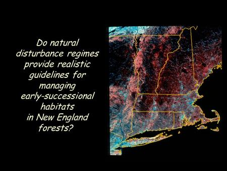 Do natural disturbance regimes provide realistic guidelines for managing early-successional habitats in New England forests?