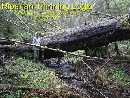 Riparian Thinning Logic Jack Sleeper - Siuslaw National Forest March 20, 2008.