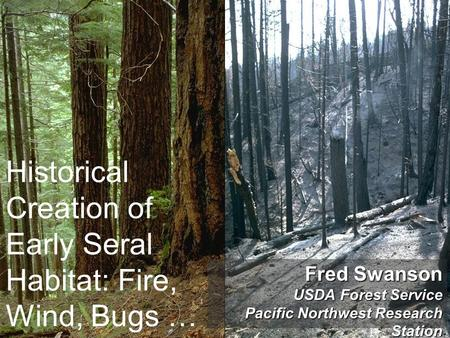 Historical Creation of Early Seral Habitat: Fire, Wind, Bugs … Fred Swanson USDA Forest Service Pacific Northwest Research Station.