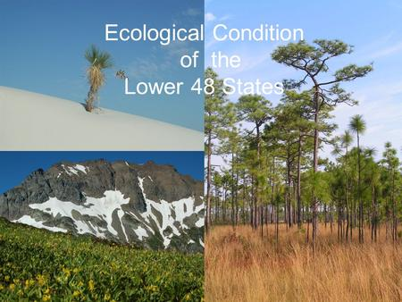 Ecological Condition of the Lower 48 States. TNCs Mission …to preserve the plants, animals and natural communities that represent the diversity of life.