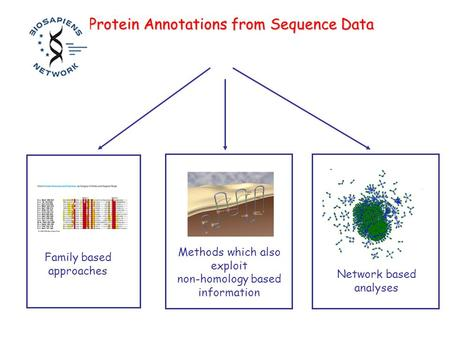 Family based approaches Methods which also exploit non-homology based information Protein Annotations from Sequence Data Network based analyses.