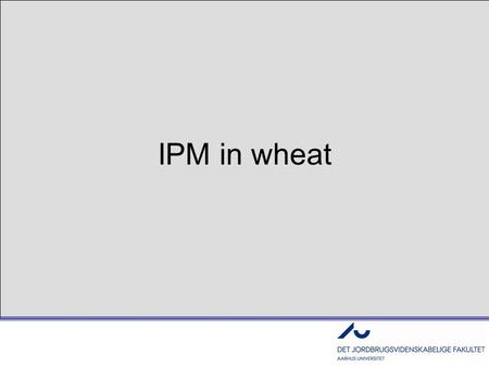 IPM in wheat. The EU requires IPM by 2014 - what does this mean??? 1.Blind Chemical control –Schematic and routine treatments 2.Chemical control based.