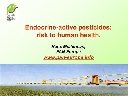 Endocrine-active pesticides: risk to human health. Hans Muilerman, PAN Europe www.pan-europe.info www.pan-europe.info.