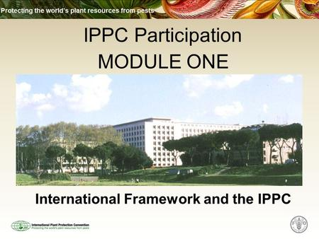International Framework and the IPPC MODULE ONE IPPC Participation.
