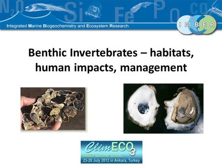 Benthic Invertebrates – habitats, human impacts, management.