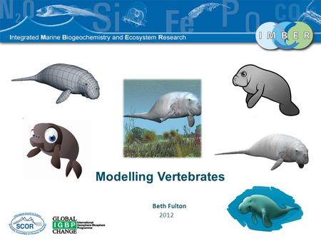 Modelling Vertebrates Beth Fulton 2012. End to End Model.