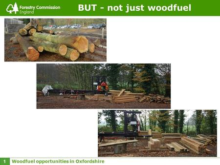 Woodfuel opportunities in Oxfordshire 1 BUT - not just woodfuel.