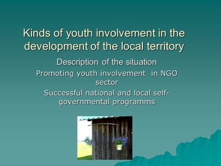 Kinds of youth involvement in the development of the local territory Description of the situation Promoting youth involvement in NGO sector Successful.