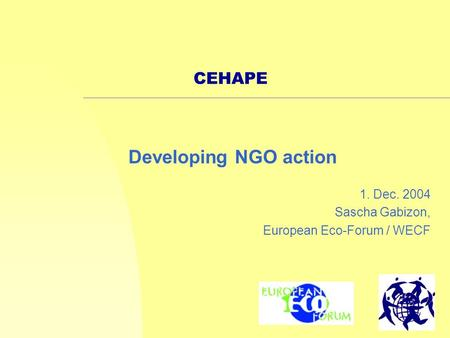1 CEHAPE 1. Dec. 2004 Sascha Gabizon, European Eco-Forum / WECF Developing NGO action.