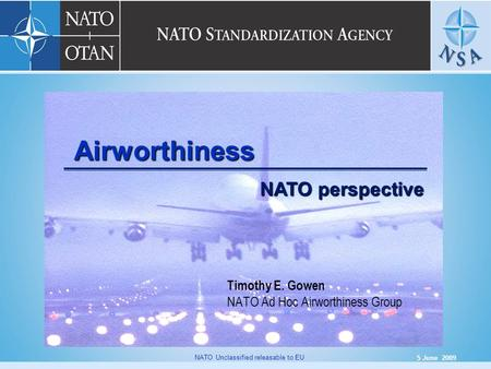 Timothy E. Gowen NATO Ad Hoc Airworthiness Group