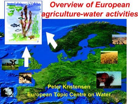 Overview of European agriculture-water activities Peter Kristensen European Topic Centre on Water.