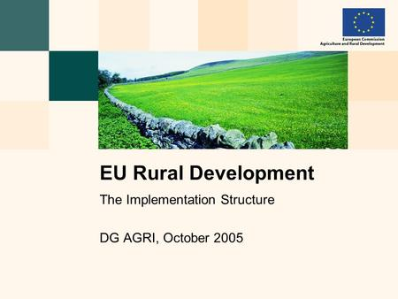 The Implementation Structure DG AGRI, October 2005 EU Rural Development.