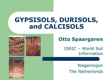 GYPSISOLS, DURISOLS, and CALCISOLS