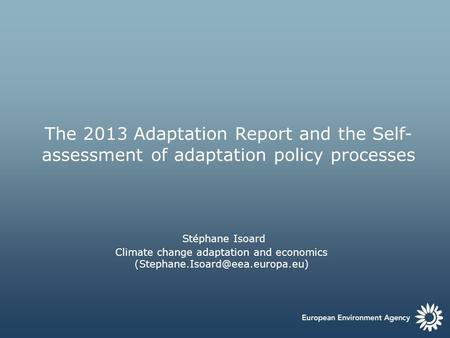 The 2013 Adaptation Report and the Self- assessment of adaptation policy processes Stéphane Isoard Climate change adaptation and economics