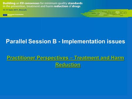 Parallel Session B - Implementation issues Practitioner Perspectives – Treatment and Harm Reduction.