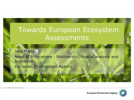 Towards European Ecosystem Assessments Jock Martin Head of Programme - Biodiversity, Spatial analysis and Scenarios European Environment Agency.