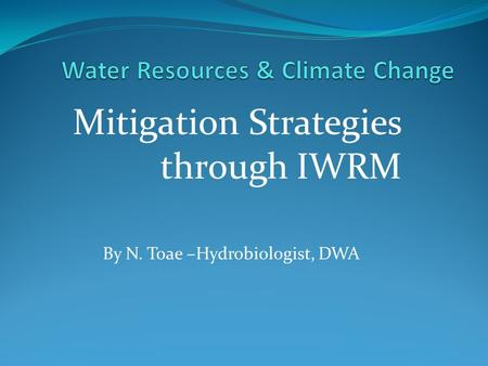 Mitigation Strategies through IWRM By N. Toae –Hydrobiologist, DWA.