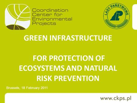 GREEN INFRASTRUCTURE FOR PROTECTION OF ECOSYSTEMS AND NATURAL RISK PREVENTION Brussels, 18 February 2011.