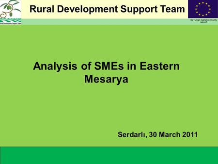 Rural Development Support Team EU Turkish Cypriot community support Analysis of SMEs in Eastern Mesarya Serdarlı, 30 March 2011.