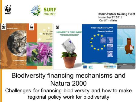 Biodiversity financing mechanisms and Natura 2000 Challenges for financing biodiversity and how to make regional policy work for biodiversity SURF-Partner.