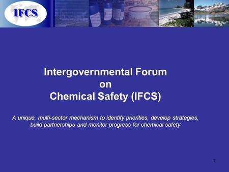 1 Intergovernmental Forum on Chemical Safety (IFCS) A unique, multi-sector mechanism to identify priorities, develop strategies, build partnerships and.