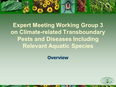 Expert Meeting Working Group 3 on Climate-related Transboundary Pests and Diseases Including Relevant Aquatic Species Overview.