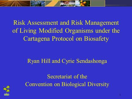 Risk Assessment and Risk Management of Living Modified Organisms under the Cartagena Protocol on Biosafety Ryan Hill and Cyrie Sendashonga Secretariat.