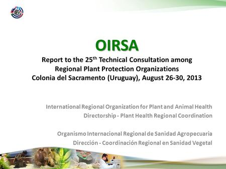 International Regional Organization for Plant and Animal Health Directorship - Plant Health Regional Coordination Organismo Internacional Regional de Sanidad.