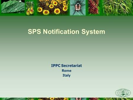 SPS Notification System IPPC Secretariat Rome Italy.