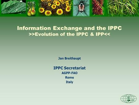 Information Exchange and the IPPC >>Evolution of the IPPC & IPP<< Jan Breithaupt IPPC Secretariat AGPP-FAO Rome Italy.
