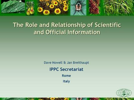 The Role and Relationship of Scientific and Official Information Dave Nowell & Jan Breithaupt IPPC Secretariat Rome Italy.