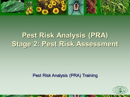 Pest Risk Analysis (PRA) Stage 2: Pest Risk Assessment Pest Risk Analysis (PRA) Training.